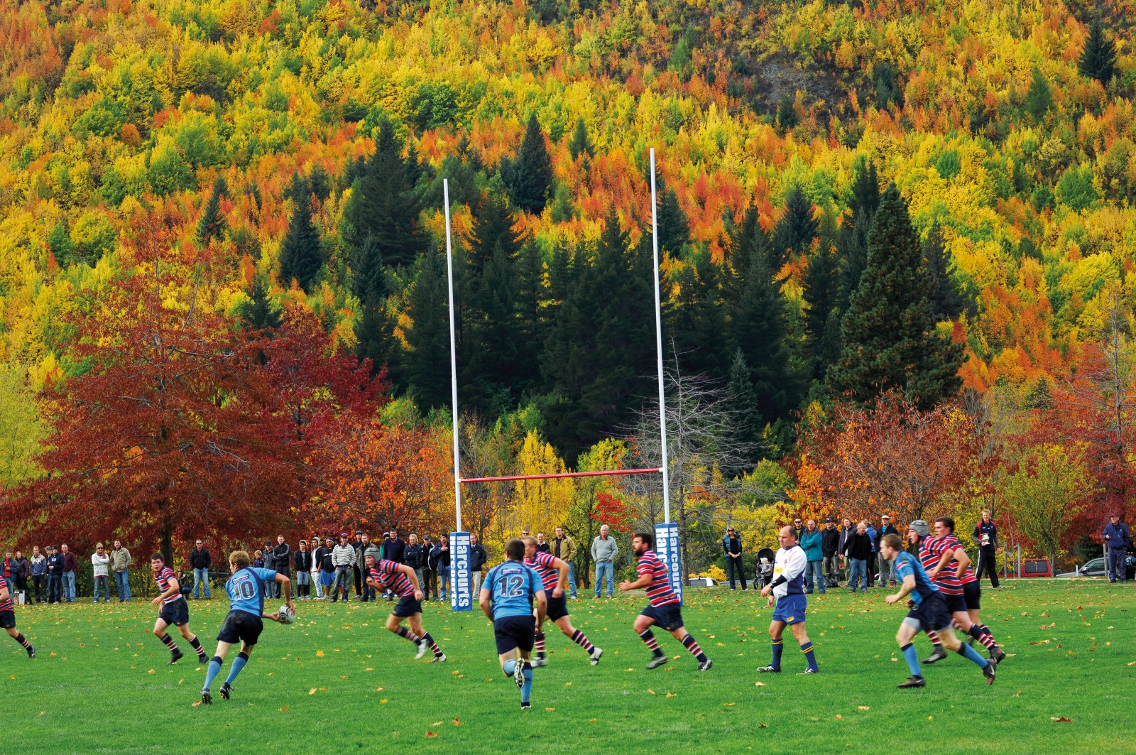 A riot of colour signals autumn as the Arrowtown Bulls' defensive screen slides across the park to cover an attacking play from Wakatipu.