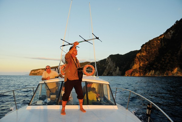 Skipper Brett Rathe manoeuvres Assassin, the boat used for most of the catching and spotlighting in 2013, along the north coast of Little Barrier at dusk, carefully avoiding rocks, reefs and crayfish pot lines. The writer holds a directional antenna and hand-held receiver, listening for tagged storm petrels. Ashore, Matt Rayner downloads data from the automated receiver/datalogger at Te Hue Point on Little Barrier (right). This receiver logged nine of the 24 birds tagged; a number on multiple nights.