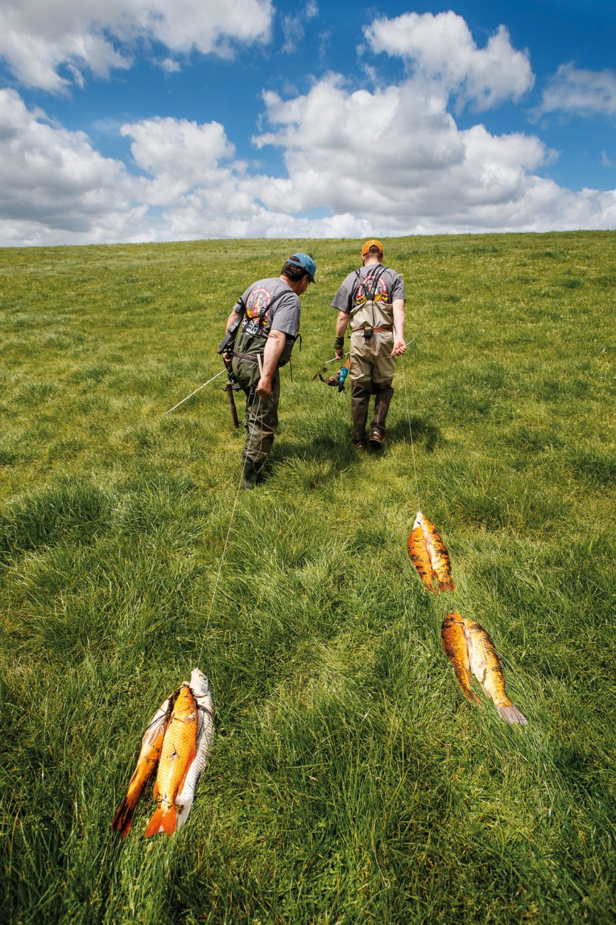 Allan Metcalfe (left) and Philipp Loest trek home across Metcalfe's old farm, next to Lake Waahi. All bowfishers lug their carp the same way, on lines looped between gill and mouth. Loest believes he's won the day by a single koi. A half hour later Metcalfe will sneak off to even the tally.