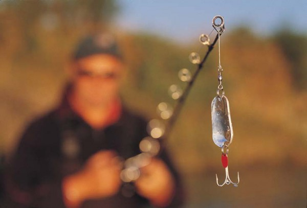 adult salmon take a power of stopping, so tackle is at the heavy end of the spec- trum. Treble-hook lures rely on their irritation value as much as their mimicry of prey, for salmon on their spawning run are little interested in food.
