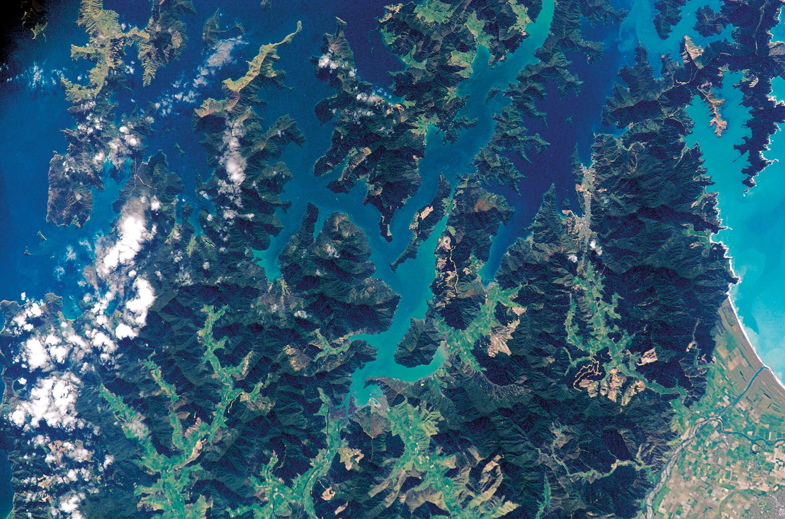 The forested ridges of the inner Marlborough Sounds splay like dark fingers against both the sea and verdant valley floors ashore.