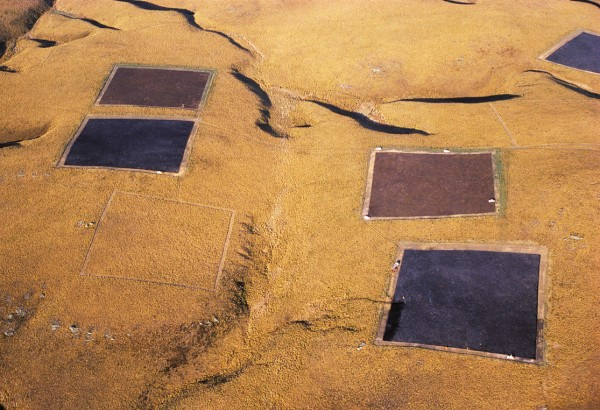 Could charred one-hectare tussock squares be Central Otago's answer to crop circles?