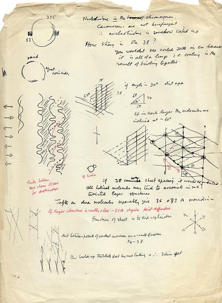 In the 1960s, Wilkins took an interest in how DNA attaches to proteins in the cell nucleus called histones, as can be seen n this page from his notebook. Like a typical do-it-yourself Kiwi, he turned to the materials at hand when he needed to engineer a piece of equipment.