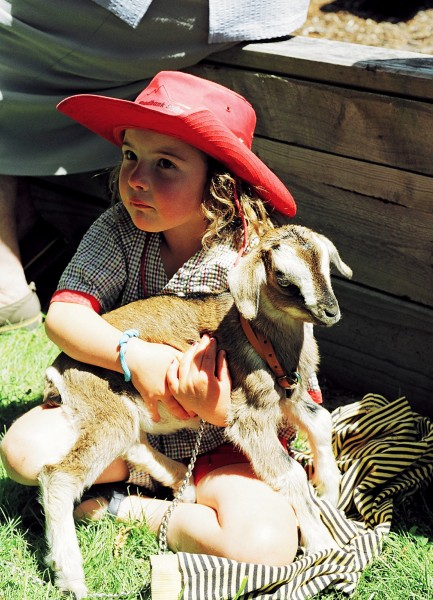 Clarence's Woodbank School started its 2005 year with a roll of nine children, among them new entrant Nicoli Lancaster, here keeping a fi rm grasp of a friend's pet goat at the school's Show Day.