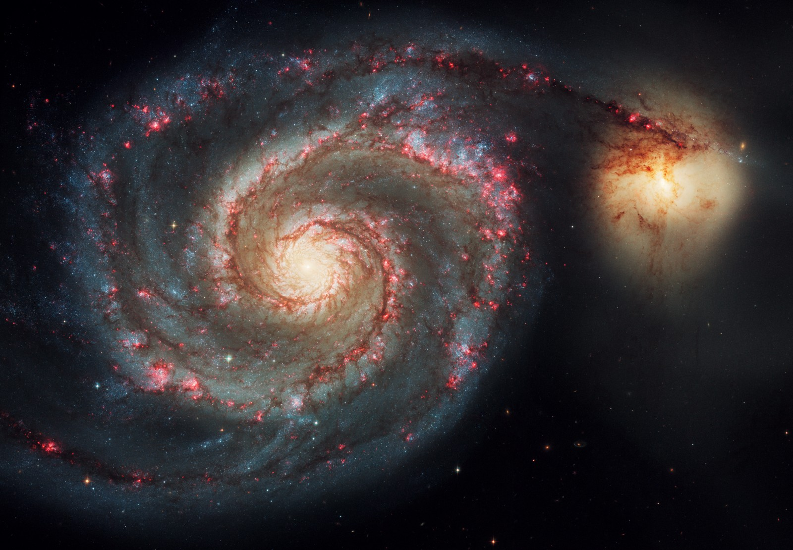 The exquisite spiral structure is more clearly seen in this classic Hubble image of the Whirlpool Galaxy, M51, which is interacting gravitationally with a galaxy to its right. Spiral galaxies like these display blue curving arms made up of young stars, peppered with bright pink star-birth regions. A yellowish central bulge contains mostly older stars and massive black holes lurk in the centre of many.