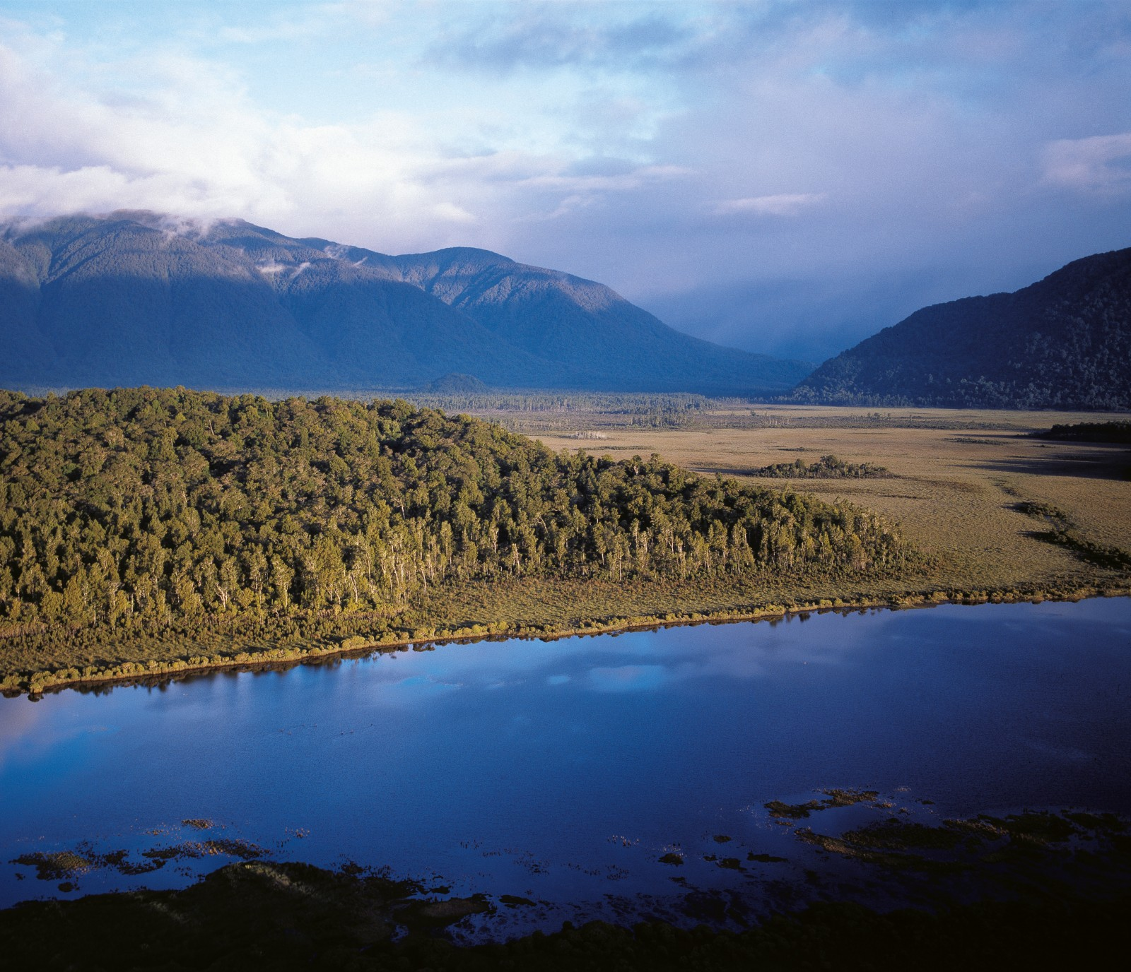 Rainfall in the mountains may exceed 8 m a year, and the district's rivers drop 50 million tons of rock a year into the sea. Wetlands around the Maori River north of Haast are typical of the district.
