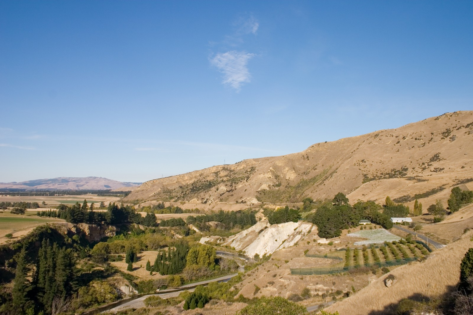 The author's Limestone Hills truffière lies in a north-facing bowl above the Waipara River in north Canterbury.