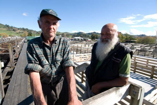 Bachelors Frank (left) and Raymond have a yarn at the Te Kuiti sale yards. Frank farms 211 ha near Piopio and Raymond is a retired shepherd.