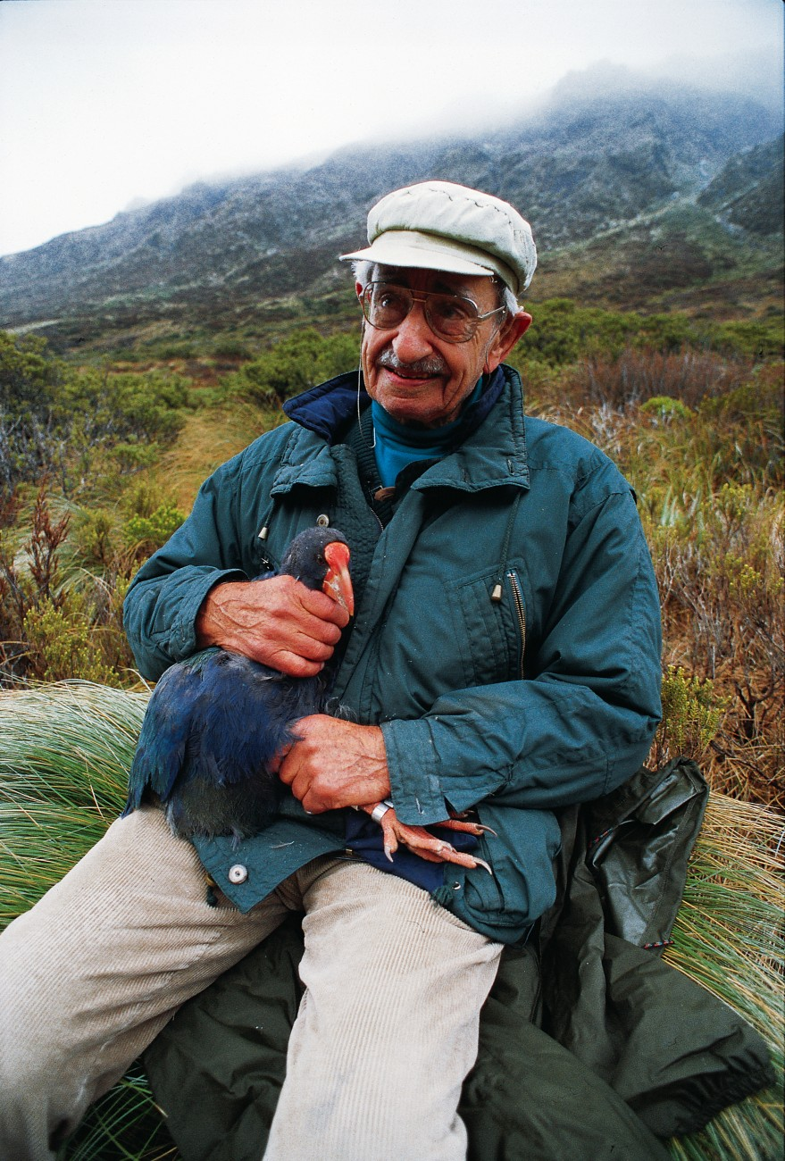 On the 50th anniversary of his rediscovery of the takahe, Geoffrey Orbell, now aged 90, helped release a number of young captive-reared birds back into the Murchisons. Although takahe are long-lived--20 years or more--the species' future is not assured, unless we can help them find the key to more successful breeding.