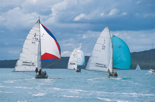"Dubbed ""the Harley-Davidsons of the Waitemata,"" mullet boats provide some of the most thrilling sailing on Auckland waters—here with every stitch aloft as they race to a mark off Rangitoto Island."