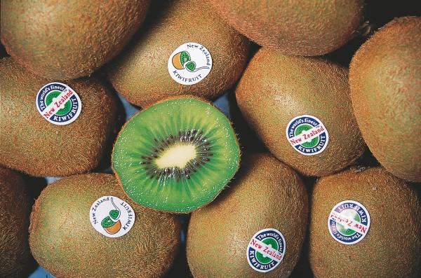 "Internationally, the word ""kiwi"" has come to mean a furry fruit (top) more than a fluffy bird. At home, the tangy green treat is called a kiwifruit, to distinguish it from the plethora of PR roles undertaken by the real kiwi."