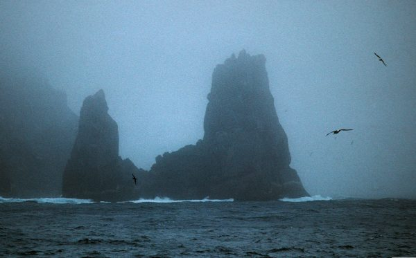 """At length did cross an Albatross, Through the fog it came."" Coleridge's famous bird would be right at home amid the mists and crags of the Snares Islands (below). First sighted by Europeans in 1791, the Snares, known to Maori as Tini Heke, comprise a large and a medium-sized island lying close together and a cluster of five islets, known as the Western Chain, 4 km away."