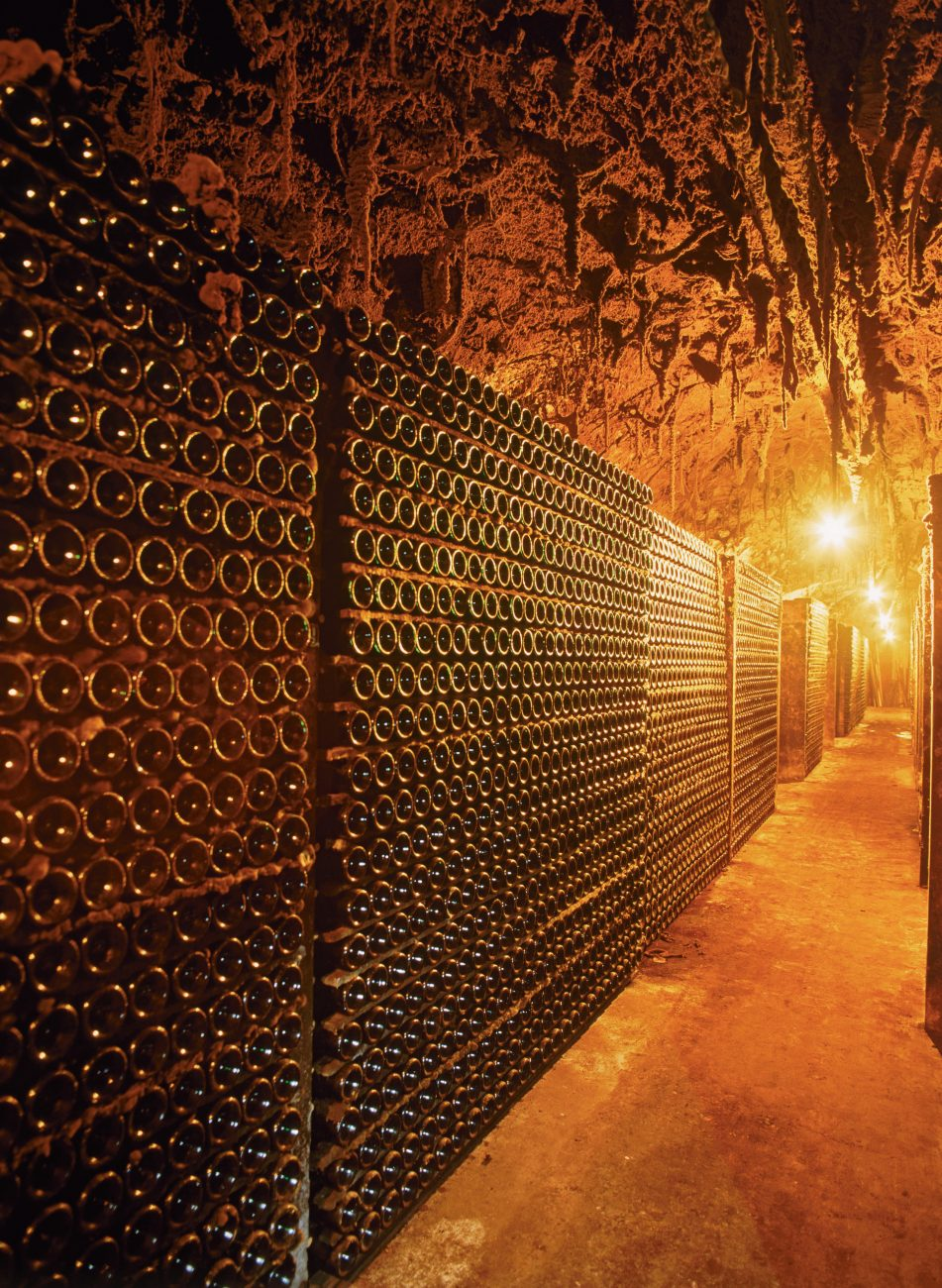 Subterranean chambers—in which many wines are fermented and stored—could become the only dependable climate for future winemakers.