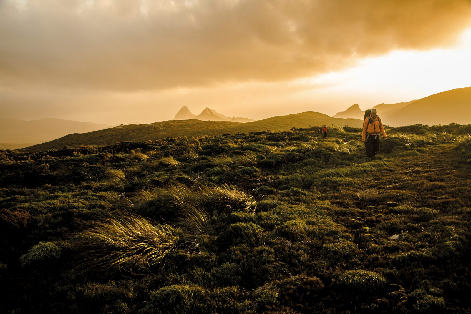 The peaks of Gog and Magog form the backdrop to prostrate mānuka, here formed into lanes by the winds of the Roaring Forties in southern Stewart Island. Trampers that venture into wilderness areas must take everything with them to survive—food, shelter, warmth and an ability to navigate.