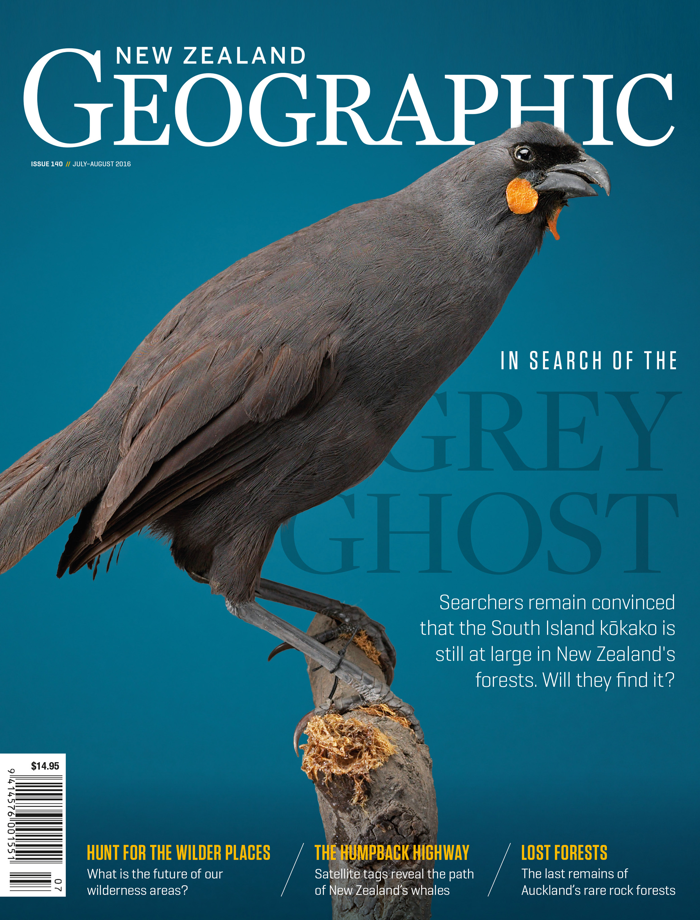 In Search of the Grey Ghost | New Zealand Geographic